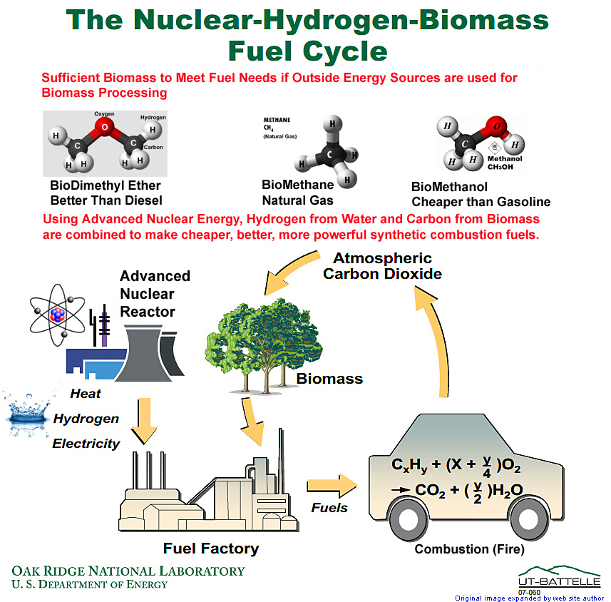 biomass cycle - photo #13